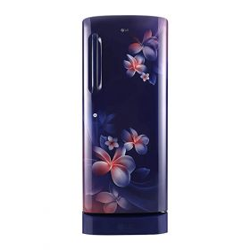 LG 190 L 4 Star(2020) Inverter Direct-Cool Single Door Refrigerator (GL-D201ABPY, Blue Plumeria)